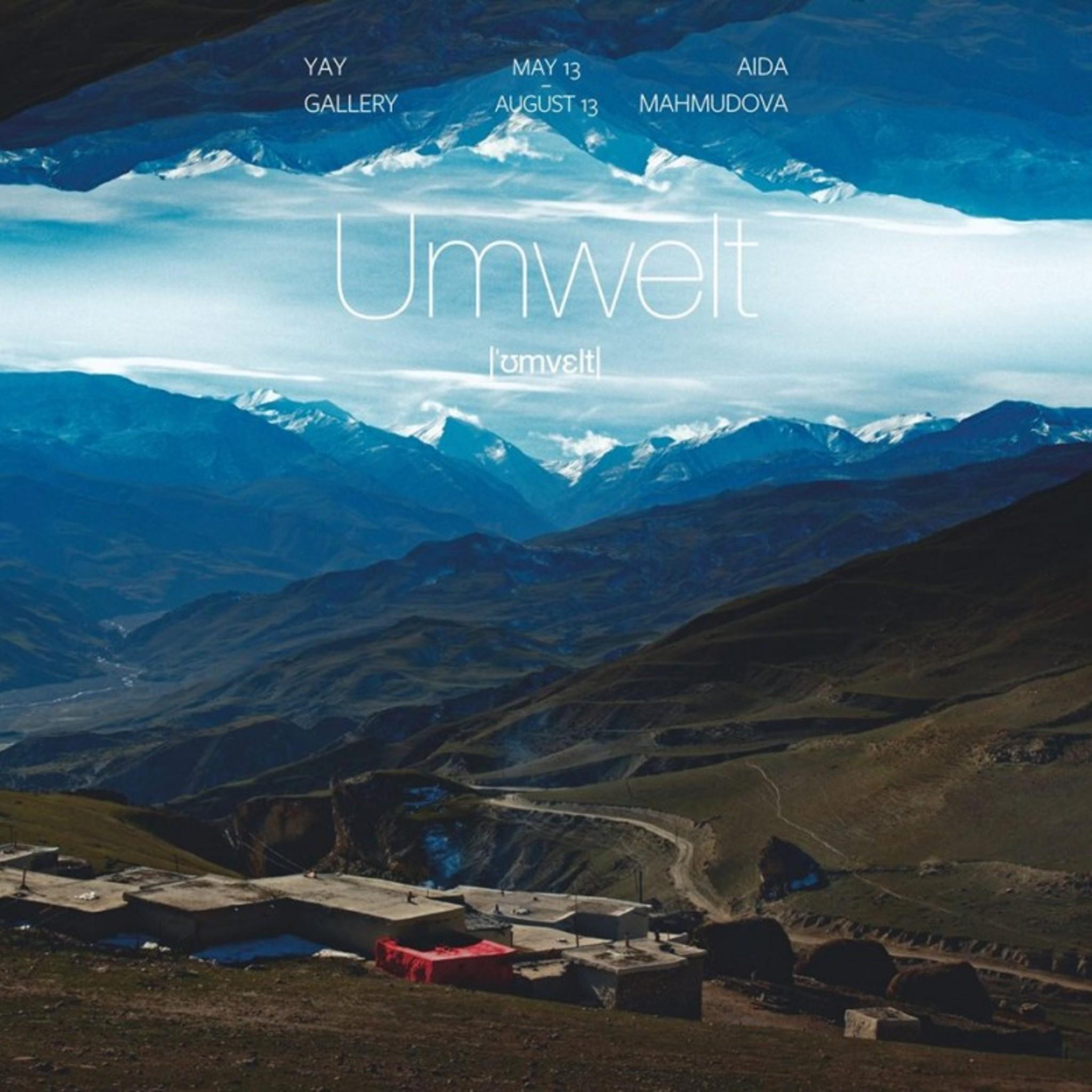 Выставка Аиды Махмудовой «UMWELT»